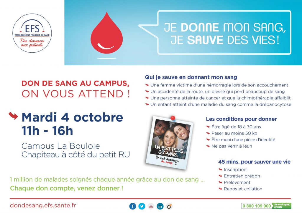 newsletter_etudiante_campus_vd