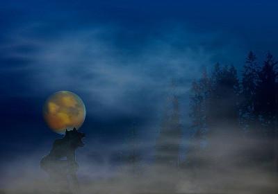 loup garou pleine lune brouillard